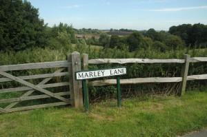 Marley Lane